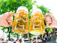 bayern-bierkruege