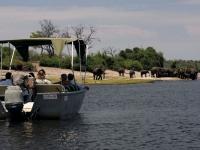 Tierbeobachtungen per Boot, Foto: BoTG