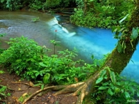 Rio Celeste, Foto: travel-to-nature
