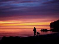 Spaziergang im Sonnenuntergang nahe Aarhus, Foto: VisitDenmark