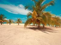 Saona Island Beach, Foto: Dominican Republic Ministry of Tourism