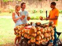 Frische Kokosnuss, Foto: Dominican Republic Ministry of Tourism