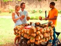 Frische Kokosnuss, Foto: Dominican Republic Ministry of Tourism
