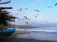 Crucita parapente a las delta, Foto: Ministerio de Turismo del Ecuador