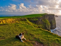 Irland Klippen Cliffs of Moher, Foto: Sean Tomkins (Tourism Ireland)