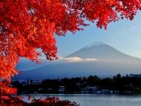 Fuji San im Herbst