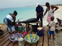 Fischersteg von Santa Maria auf Sal, Foto: Kopp Tours
