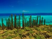Üppige Vegetation und türkisblaues Meer, Foto: Martial Dosdane/GIE NCTSP