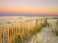 neuengland_cape_cod_strand, Foto: Shutterstock