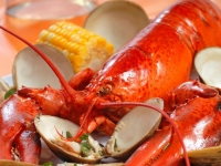 neuengland_lobster_dinner, Foto: Shutterstock