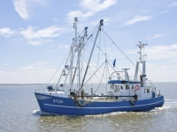 Fischkutter auf der Nordsee, Carlos Arias Enciso / www.nordseetourismus.de