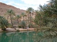 Wadi, Foto: Nomad Reisen