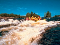 Rafting auf dem Ottawa River, Foto: Ontario Tourism Marketing Partnership Corporation
