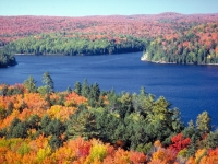 Herbst im Algonquin Provincal Park, Foto: Ontario Tourism Marketing Partnership Corporation