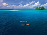 Diving, Foto: Kirklandphotos.com (via BoTG)
