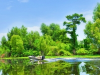 Louisiana Atchafalaya River Basin, Foto: Shutterstock