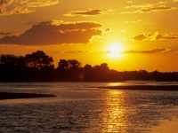Selous, Wildreservat Rufiji-River, Foto: Outback Africa