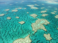 Aerial View of Great Barrier Reef, pics721