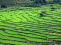 thailand-reisfelder