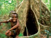 Banyan Boy, Foto: Vanuatu Tourism Office