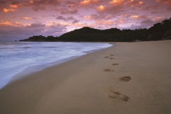 Sunset on The Beach of Townsville - Queensland-Urlaub  (Bild: Tourism Queensland)