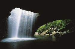 Natural Bridge, Gold Coast  (Bild: Tourism Queensland)