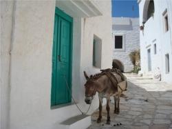 Griechenland: Traumurlaub in Hellas