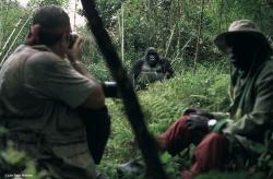 Uganda & Ruanda: Heimat der Gorillas - 100 Urlaubsziele