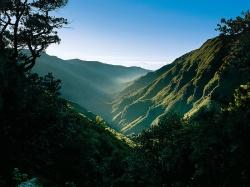 Madeira - Blumeninsel im Atlantik - 100 Urlaubsziele