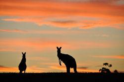 Australien – einfach unvergleichlich