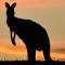 Australien – einfach unvergleichlich - Vorschau