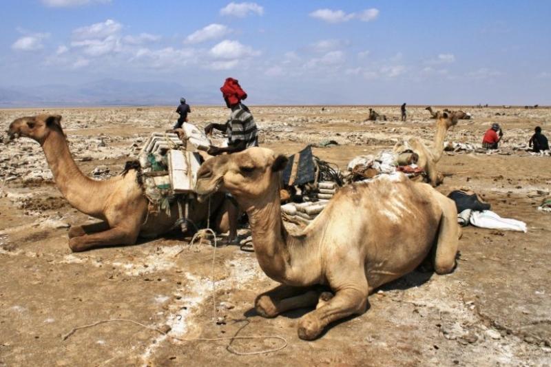 stadt im westen äthiopiens