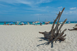 Strand auf Ibiza  (Bild: Ibiza and Formentera August and September 2011, David Sim, CC BY)