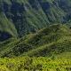 Madeira - Blumeninsel im Atlantik - Vorschau